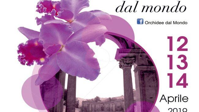 Ai Castelli Romani torna Orchidee dal Mondo