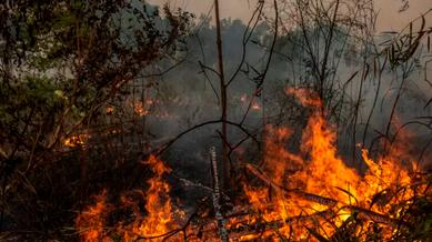 Per numero di incendi l'Italia è in zona rossa